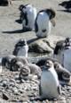 Patagonien - Wo die Welt zu Ende ist